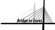 Bridge to Cures