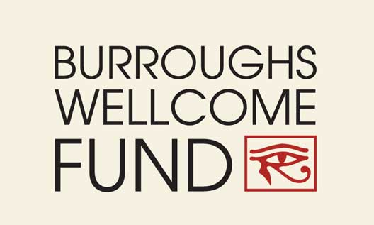 BWF Collaborative Research Travel Grants