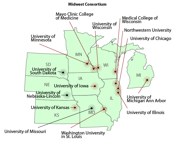 The MC Consortium includes representatives from regional CTSA and K12 institutions and from institutions in Institutional Development Award (IDeA) states.