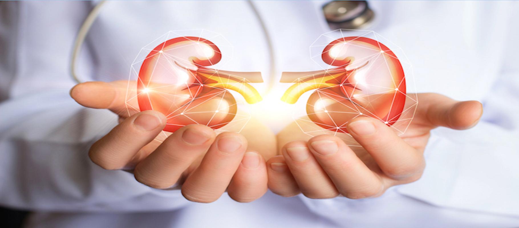 Discovery Radio – Episode 36: Kidney Disease (IgA Nephropathy): Treatment Through Transplant