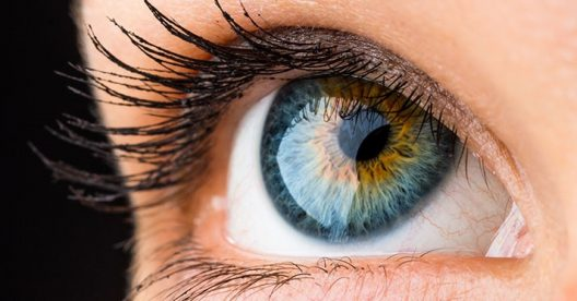 Discovery Radio Episode #29 – Eye Institute 40th Anniversary