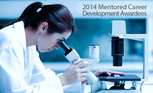 CTSI Announces Four Mentored Career Development Awards in 2014